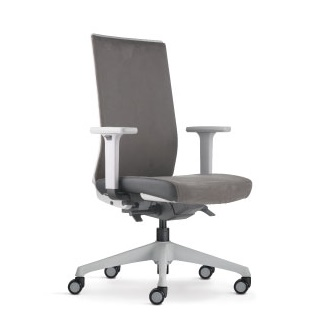 Surface Office Chair